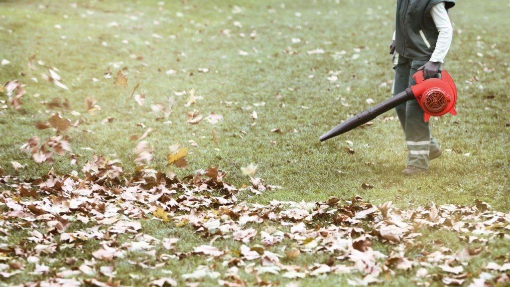 Sopladores de hojas Greencut